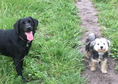 Tess & Walter (2)
